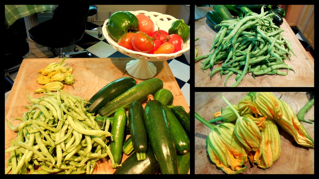 071214 produce from garden