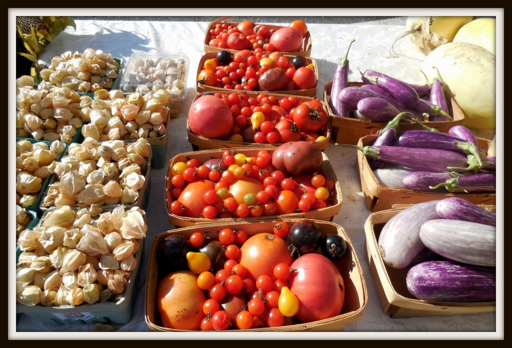 100514 tomatoes
