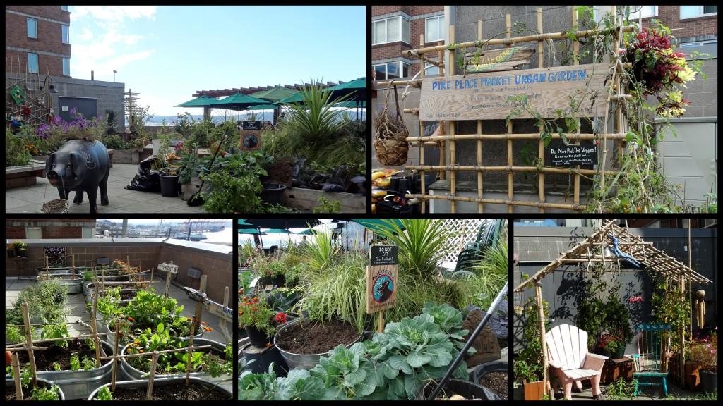 101914 pikes mkt garden